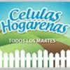 Células En El Hogar